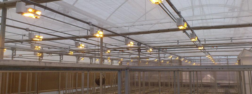 Generar electricidad en el invernadero