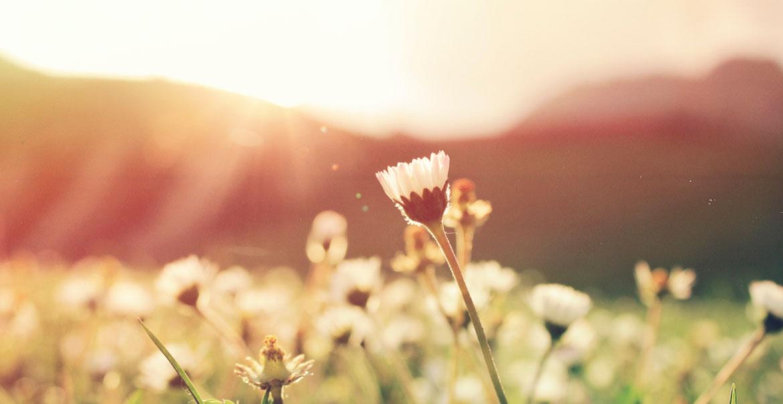 Primavera, la estación de las horas de luz…